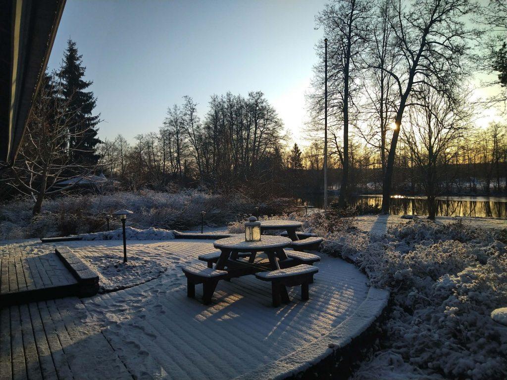Strukan puutarha talvella