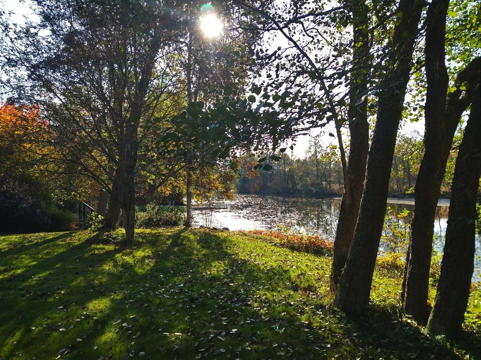 Strukan vuokramökin edustalla on vehreä nurmikkopiha ja upea jokimaisema